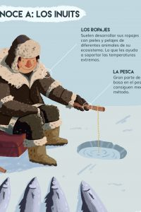 Ilustracion infografía inuits