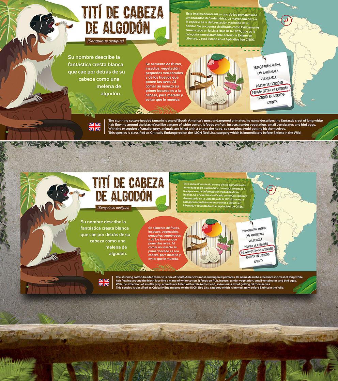 Cartel ilustrado zoo