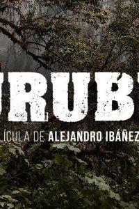 logo2-urubu